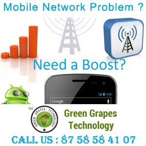 Green Grapes Technology