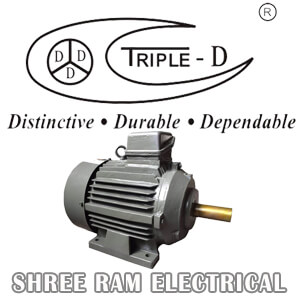 Shree Ram Electrical TRIPLE D MOTORS