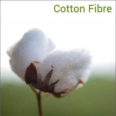 cotton fibre companies