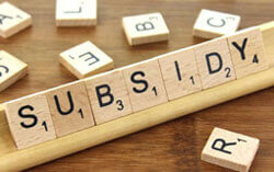 subsidy consltants