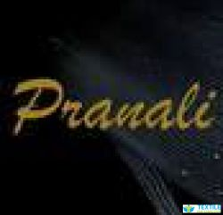 Pranali Fashion Design Studio In Surat Anarkali Suits Exporter Gujarat Ladies Wedding Wear Manufacturer Wholesaler Of Ladies Cotton Anarkali Suit