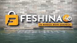 Feshina4u logo icon