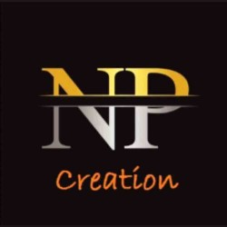 n p creation logo icon