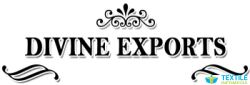 Divine Export logo icon