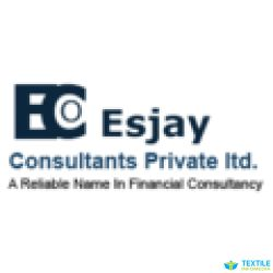 Esjay Consultants Private Limited logo icon