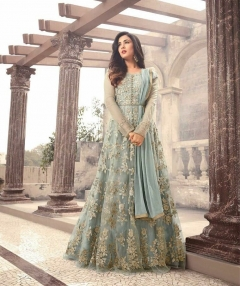 Heavy Net with Embroidery work suit
